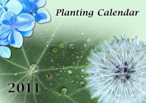 Planting Calendar 2011