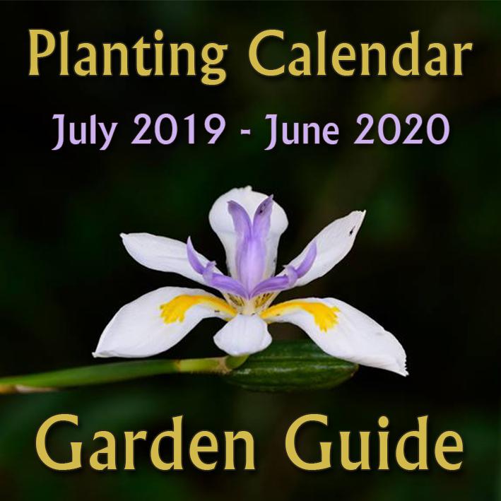 2019---2020-Planting-Calendar-thumbnail